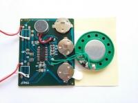 Звуковой модуль